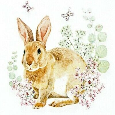4 XSingle Paper Napkins/3 Ply/Decoupage/Easter/Animals/Little Rabbit In Flowers  • 1.25£