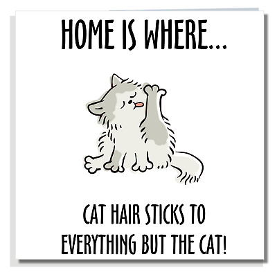 FUNNY NEW HOME CARD Congratulations Good Luck Neighbours Moving House Cat P028 • 2.99£