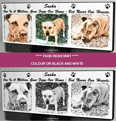 Personalised Pet Indoor Memorial Plaque Wall Hanging Photo Dog Sign Remembrance  • 8.90£