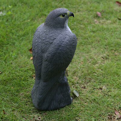Realistic Falcon Decoy Weed Pest Repellent Garden Scarer Scarecrow • 10.94£