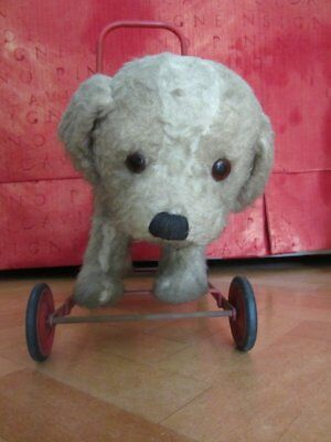 Vintage  ST BERNARD Early 1950's Push Along Dog On Wheels TRIANG • 125£