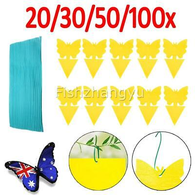 AU11.95 • Buy 20/30/50/100x Yellow Sticky Trap Insect Killer Whitefly Thrip Fruit Fly Gnat