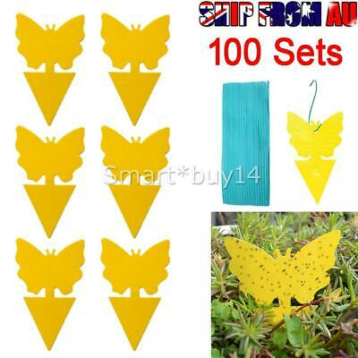 AU19.50 • Buy 100x Yellow Sticky Insect Killer Whitefly Thrip Fruit Fly Gnat Leafminer Trap