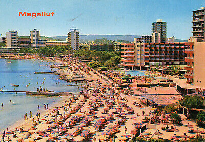 Postcard  Europe  Spain Mallorca   Magalluf    Posted  • 3£