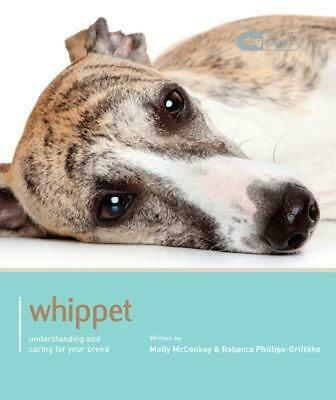 Whippet - Dog Expert By Molly Mcconkey (English) Paperback Book Free Shipping! • 16.71£
