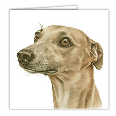 £2.99 • Buy Whippet Greetings Card Dog Blank Card Dogs Whippets WAGGYDOGZ Cards Art Card Pet