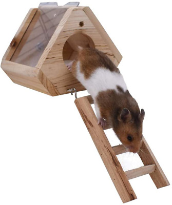 GZGZADMC 2Tiers Hanging Wooden Hamster Cage With Wooden Ladder, Natural Living E • 16.69£