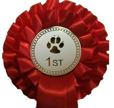 £8 • Buy Individual Placing Dog Show 2 Tier Rosettes In Quality Satin