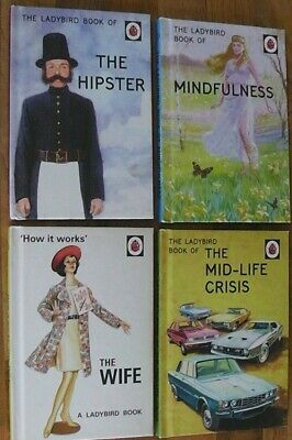 The Ladybird Book Of Mindfulness,the Hipster,The Wife,Humerous Books For Adults • 7.95£