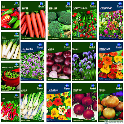 Vegetable Flower Seeds Tomato Herb Seeds Grow Your Own Garden Treasures • 1.25£