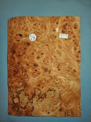 £10 • Buy CONSECUTIVE SHEETS OF  BURR PEPPER WOOD VENEER 26 X 19 Cm PW#3 MARQUETRY