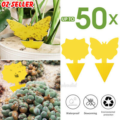 AU15.75 • Buy 10/20/30/50x Dual Sided Sticky Trap Insect Killer Whitefly Thrip Fruit Fly Gnat