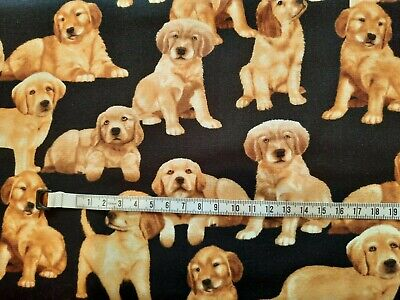 £5.50 • Buy Labrador Cute Dogs Puppies Cotton Fabric Timeless Treasures Dogs  Puppy C-3158