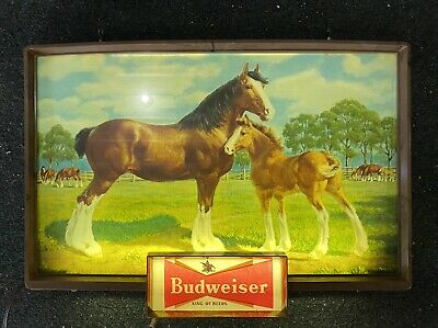 $ CDN374.93 • Buy Rare Vintage Budweiser Beer Lighted Sign Clydesdale Horse Baby Colt 1950 1960's