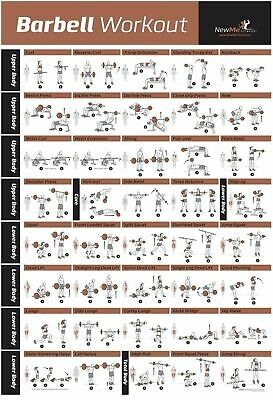 £9.42 • Buy Barbell Workout Exercise Poster Laminated - Home Gym Weight Lifting Chart - Bui