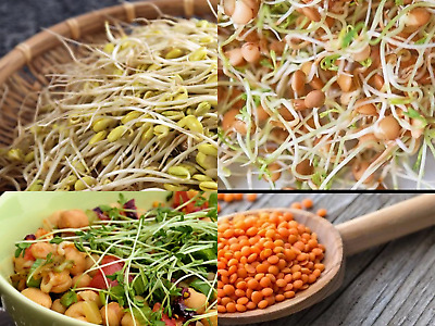 £2.49 • Buy ✅Buy 2 GET 2 Free ✅HEALTHY MIX3 ORGANIC SEEDS SPROUTING SHOOTS MICROGREENS 12.5G