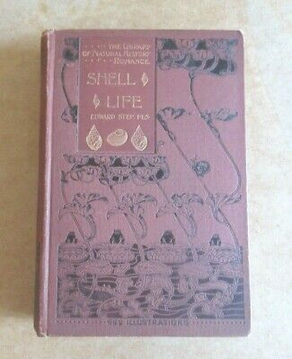 £32 • Buy Book Shell Life An Introduction To The British Mollusca Edward Step Warne 1901