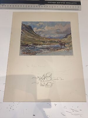 £15 • Buy 1929 Scottish Sketch Book Lionel Edwards Illustrated The River Ossian