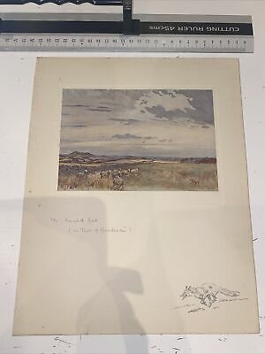 £15 • Buy 1929 Scottish Sketch Book Lionel Edwards Illustrated The Hunted Fox