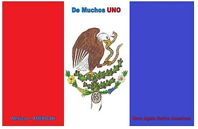 £3.61 • Buy Native Mexican American Chicano Power Flag (Poster) 11 X17 Inches