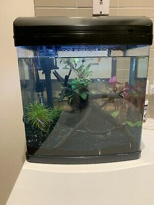 AU80 • Buy Fish Tank Aquarium - Approx 30L. Comes With Everything!