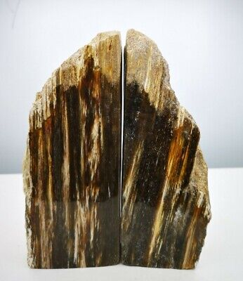 £49.99 • Buy Stunning Heavy Large Indonesian Petrified Opalised Wood  Bookends