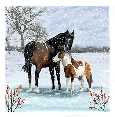 £4 • Buy Redwings Horse And Foal Christmas Cards