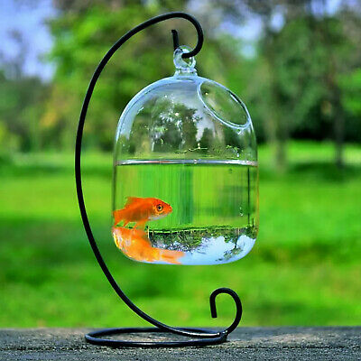 AU31.34 • Buy Aquarium Hanging Fish Tank Bowl With Stand Glass Fish Vase For Table Home Decor