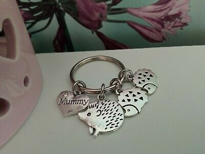 £2.25 • Buy  Mummy  Keyring With Large Hedgehog & Cute Smaller Hedgehogs - Lovely Gift