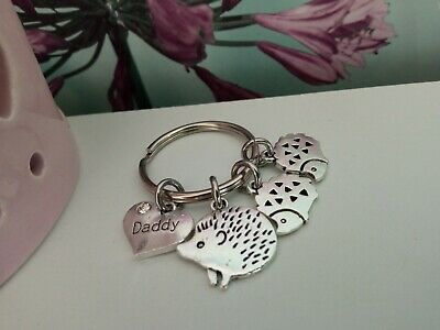 £2.25 • Buy  Daddy  Keyring With Large Hedgehog & Cute Smaller Hedgehogs - Lovely Gift