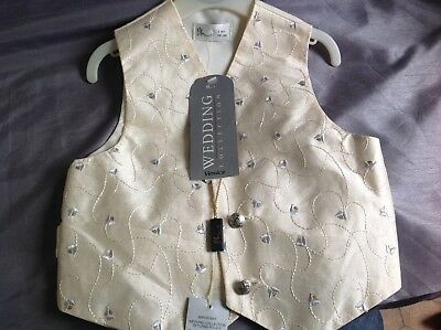 £5 • Buy Bhs Wedding Collection Boys Ivory And Pale Blue Waistcoat(new)