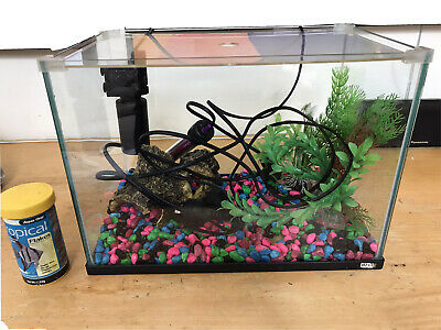 AU25 • Buy 20L Glass Fish Tank And Accessories
