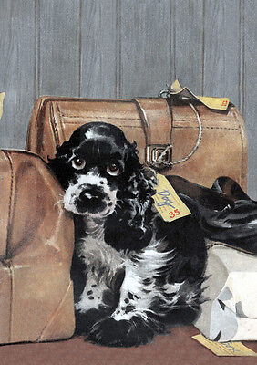 £2.25 • Buy Cocker Spaniel In Left Luggage Charming Comic Dog Greetings Note Card