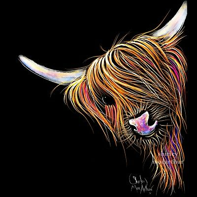 £40 • Buy HIGHLAND COW PRINTS WaLL ART Of Original Painting 'NooDLeS' By SHIRLEY MACARTHUR