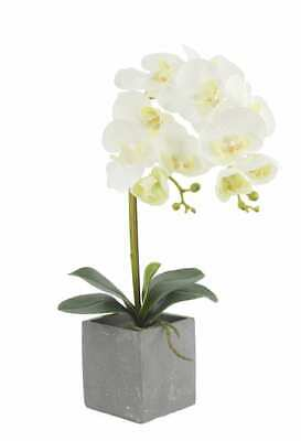 AU38.49 • Buy 50cm Potted Artificial Phalaenopsis Orchid