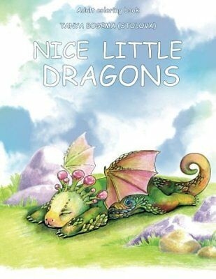 Nice Little Town Dragons Adult Colouring Book Fantasy Magical Mystical Fairy • 7.99£