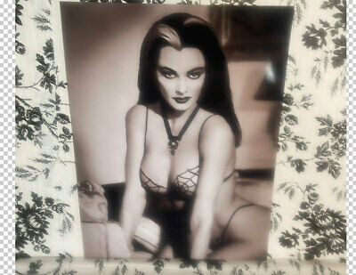 The Munsters Yvonne De Carlo Lily Munster Sexy Actress Bikini Publicity Photo  • 8.27£