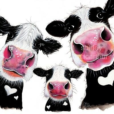 £7.99 • Buy COW PRINTS WaLL ART CoW CaNVaS Of Original Painting 'THe NoSeY FaMiLY' SHIRLEY M