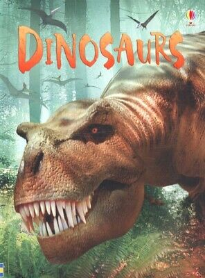 £2.44 • Buy Usborne Beginners : Information For Young Readers.: Dinosaurs By Stephanie