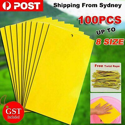 AU12.99 • Buy Up 100pc Yellow Sticky Glue Paper Insect Trap Catcher Killer Fly Aphids Wasp Lot
