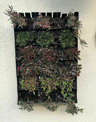 Planting Bag Hanging Living Wall Vertical Planter Flower Herb Garden 18 Slots • 14.97£