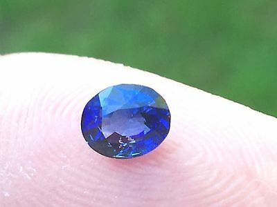 Natural Ceylon Blue Sapphire Oval 0.90 Ct Unheated Certified Gemstone • 425$