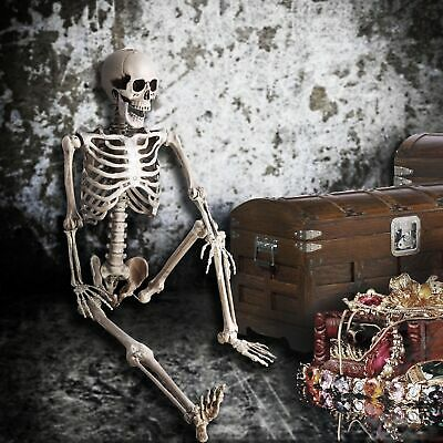 $ CDN63.31 • Buy 5 FT Full Body Skeleton Props Movable Joints Haunted House Halloween Decoration