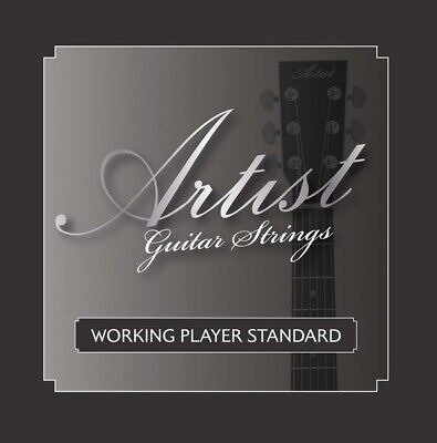 AU8 • Buy Artist ACST1047 Acoustic Guitar Steel Strings Gauge 10-47 - New