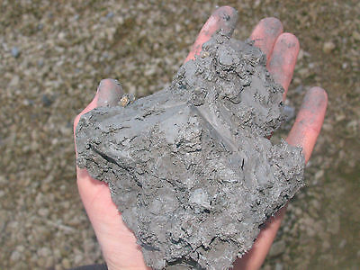 Aquatic Compost Clay Soil Ideal For All Pond Plants And Gardening 5kg • 11.99£