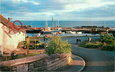 Picture Postcard~ Helmsdale, The Harbour • 3.39£