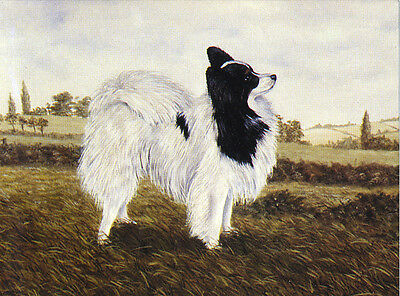 £2.25 • Buy Papillon Charming Dog Greetings Note Card Beautiful Standing Dog