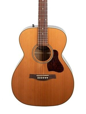 $562 • Buy Seagull Coastline Momentum Series OM Body Acoustic Electric Guitar