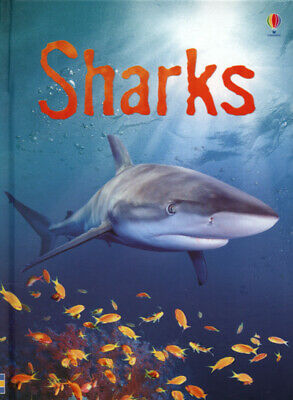 £2.57 • Buy Usborne Beginners : Information For Young Readers.: Sharks By Catriona Clarke