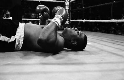 OLD BOXING PHOTO James Tillis Is Knocked Out By Tommy Morrison • 4.69£